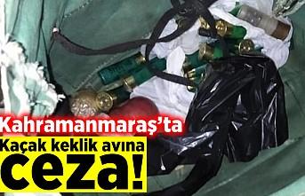Kahramanmaraş'ta keklik avına ceza!