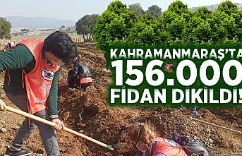 Kahramanmaraş'ta 156 bin fidan dikildi!
