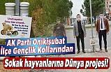 AK Parti Onikişubat Gençlik Kollarından sokak hayvanlarına Dünya projesi!