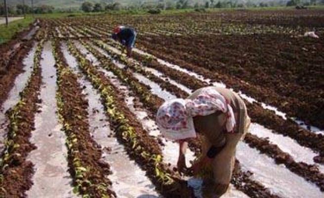 Çiftçiye kredi desteği artıyor
