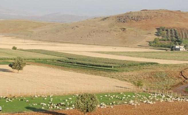 Vali Tanılır, MADO çiftliğinde incelemelerde bulundu