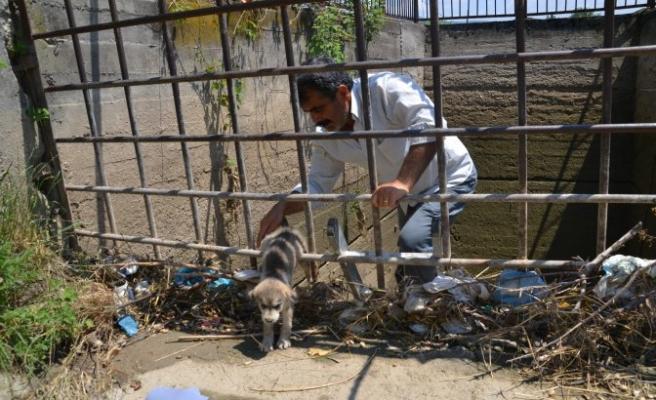Su kanalı kuyusuna düşen yavru köpek kurtarıldı