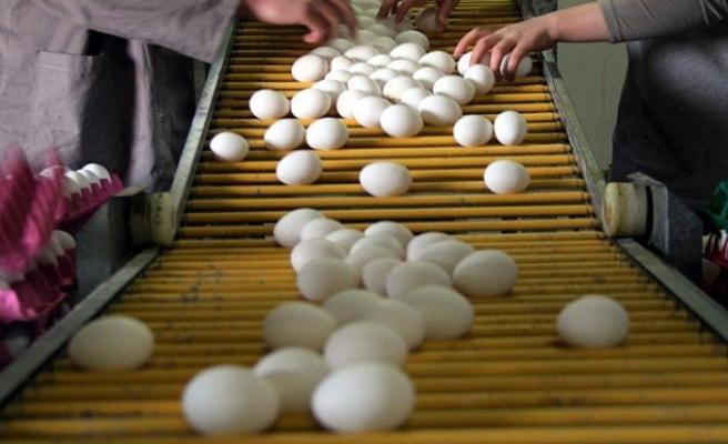 28 günden eski yumurta satılamayacak