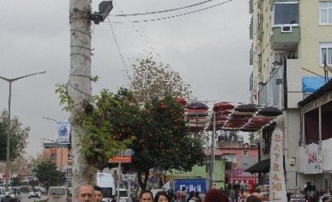Ağaçtaki Türk Bayrağı Sahipsiz Kaldı