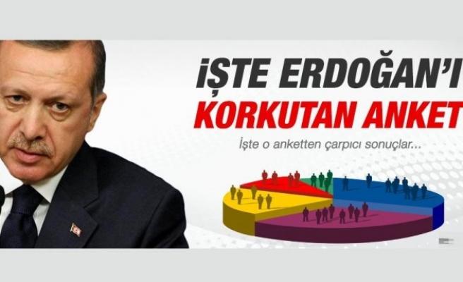 Erdoğan'ı korkutan anket!