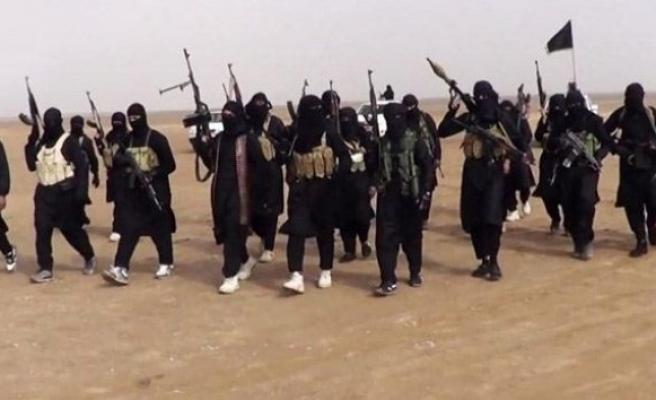 IŞİD üyesi dört kişi yakalandı!