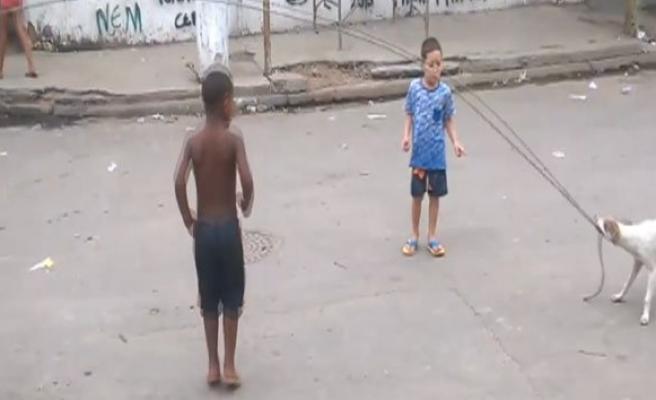 Köpek salladı çocuklar ip atladı!