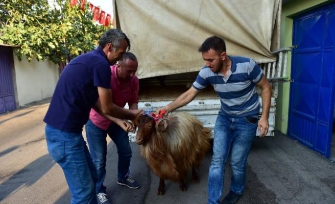 Başkan Okay Şehit Ve Gazi Yakınlarını Ziyaret Etti