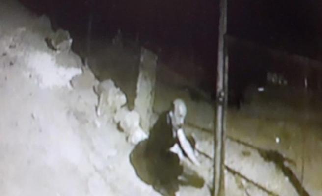 Hayvan hırsızları polise yakalandı