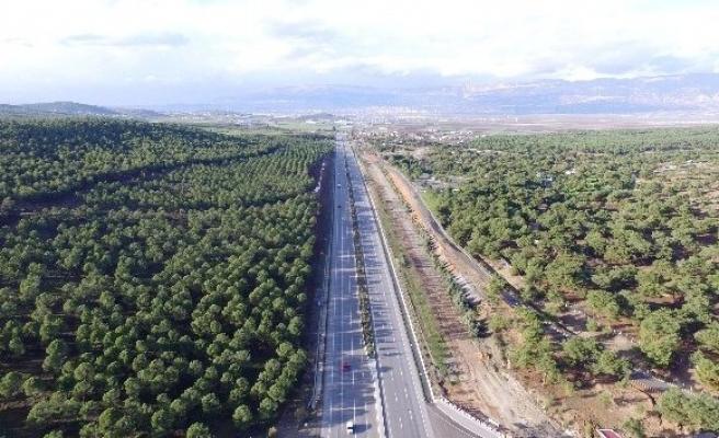 Kahramanmaraş'ın yüzde 36'sı orman