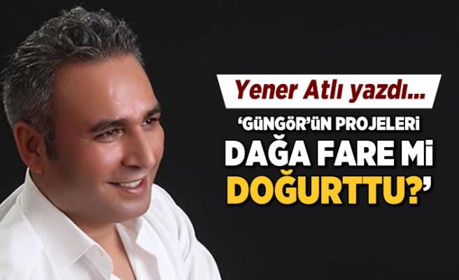 Yener Atlı yazdı: Güngör'ün projeleri dağa fare mi doğurttu?
