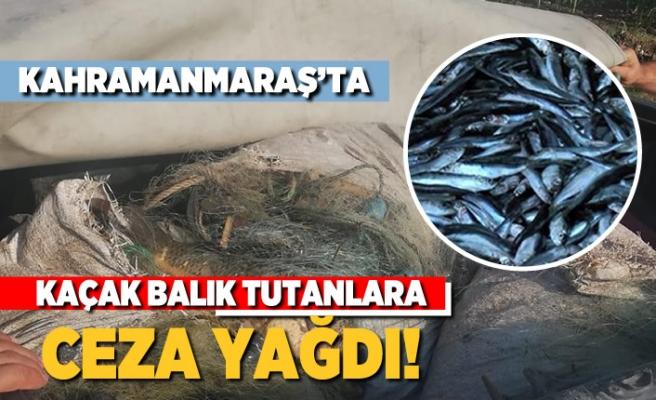 Kahramanmaraş'ta kaçak balık tutanlara ceza yağdı!