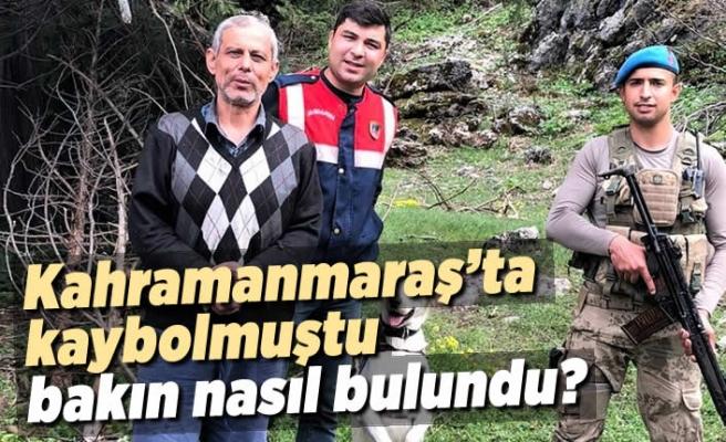 Kahramanmaraş'ta kaybolmuştu bakın nasıl bulundu?