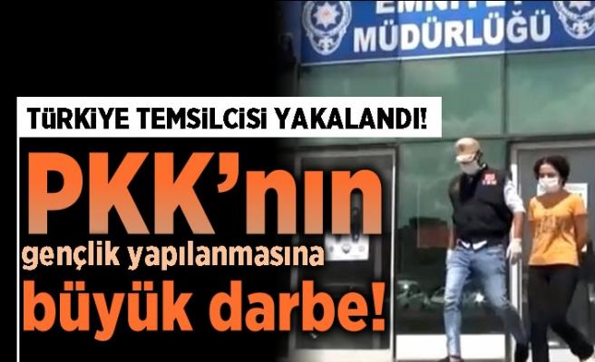 Sözde Türkiye temsilcisi yakalandı! PKK'nın gençlik yapılanmasına büyük darbe!