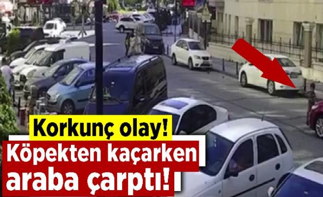 Korkunç olay! Köpekten kaçarken araba çarptı! Durumu ise...