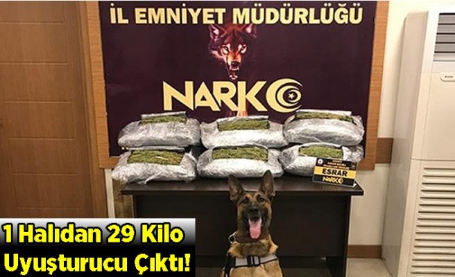 1 Halıdan 29 Kilo Uyuşturucu Çıktı!