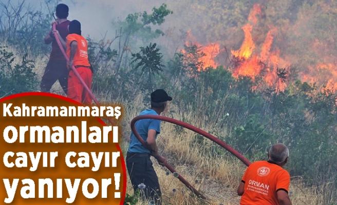 Kahramanmaraş ormanları cayır cayır yanıyor!