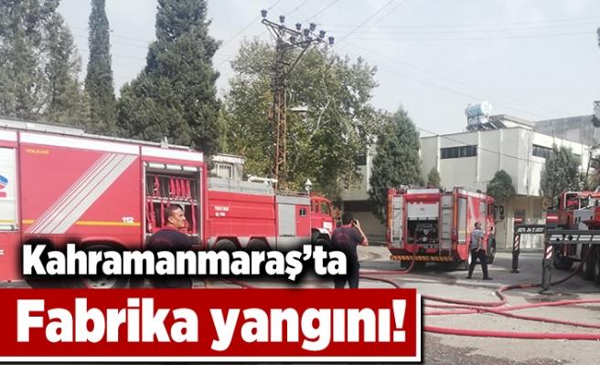 Kahramanmaraş'ta fabrika yangını!