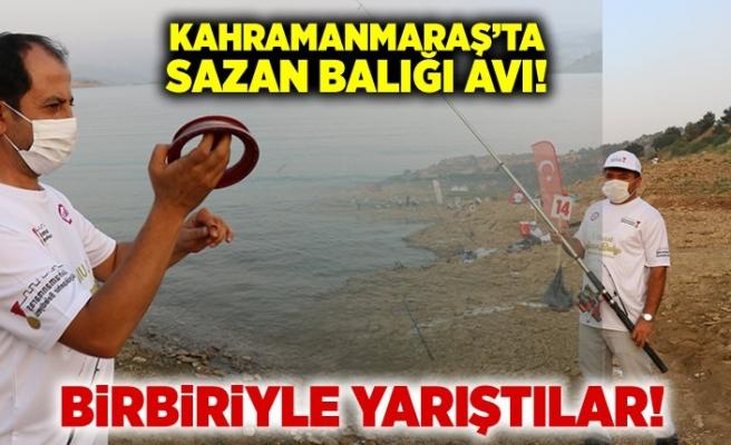 Kahramanmaraş'ta sazan balığı avı, birbiriyle yarıştılar!