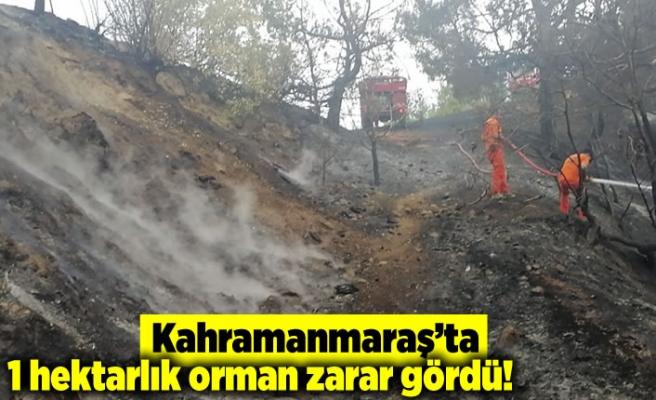 Kahramanmaraş'ta 1 hektarlık alan zarar gördü!