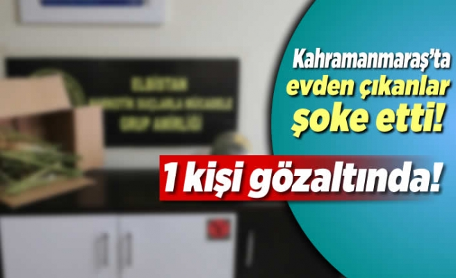 Kahramanmaraş'ta evden çıkanlar şoke etti! 1 kişi gözaltında