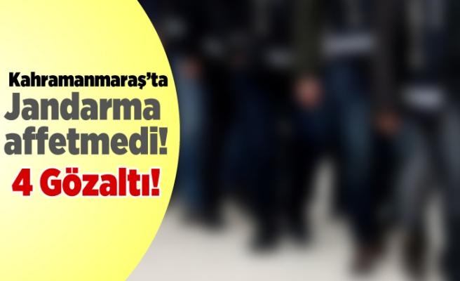 Kahramanmaraş'ta jandarma affetmedi! 4 gözaltı..