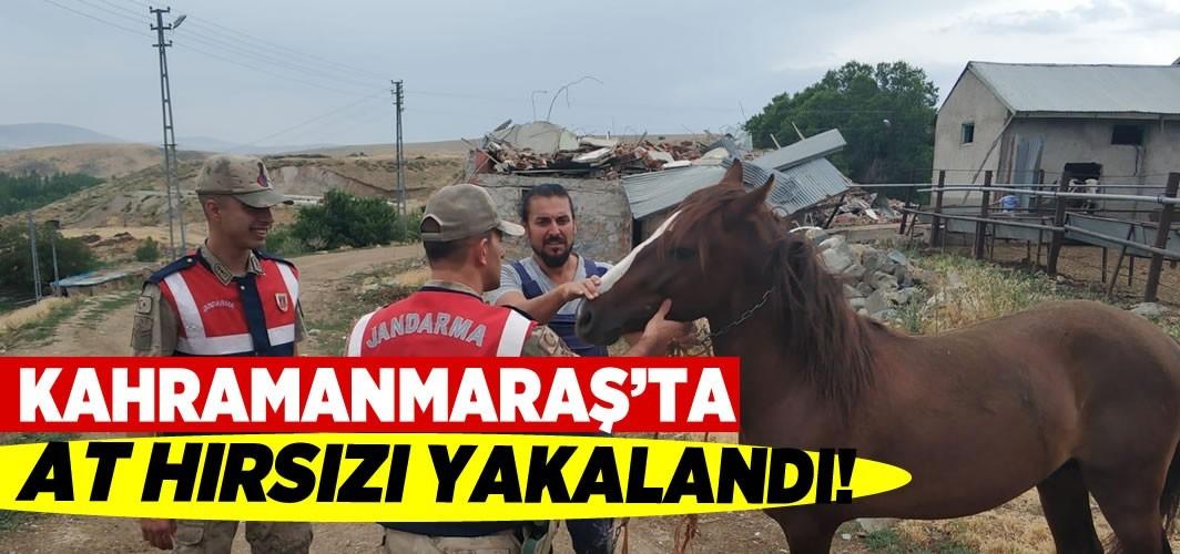 Kahramanmaraş'ta at hırsızı yakalandı!