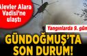 Son Dakika Haberleri: Yangınlarda 9. gün! Alevler...