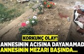 Korkunç olay! Annesinin acısına dayanamadı annesinin mezarı başında...