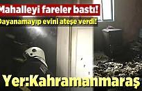 Kahramanmaraş'ta mahalleyi basan farelere sinirlenip evini ateşe verdi!