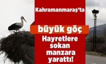 Kahramanmaraş'ta hayretlere düşüren göç başladı!