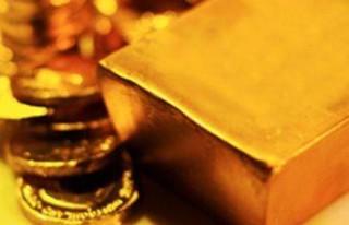 'Altın yükselecek, elinizde tutun'