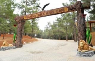 Pınarbaşı Mesire alanının açılış töreni...