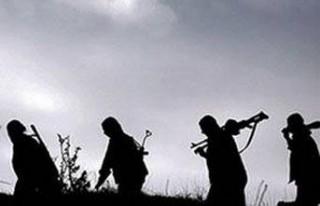 FLAŞ: İşte PKK'nın MOSSAD bağlantısı!