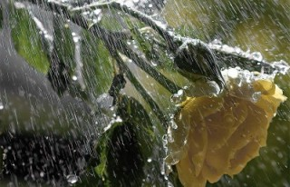 DİKKAT: Meteoroloji'den sağanak uyarısı!...