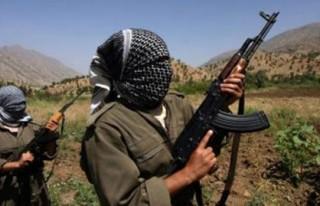 İşte PKK'nın iğrenç yüzü!..