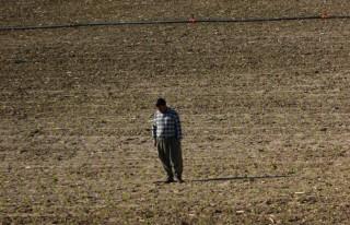 Çiftçi yağmuru bekliyor