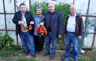 Yaş sebze meyve ihracatı durma noktasında
