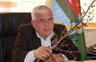 Elbistan'da Kayısı Ağaçlarını Don Vurdu