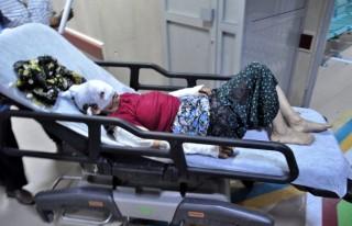 Kurt saldırısına uğrayan 2 kadın yaralandı