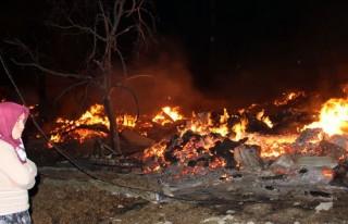 Yangında bir köyde 29 ev kül oldu!