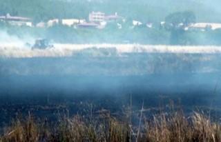 600 ton Hububat yangında kül oldu