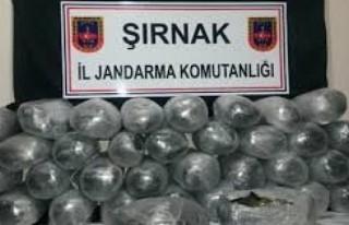 Şırnak'ta uyuşturucu operasyonu!