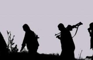 2 PKK'lı teslim oldu!