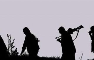 Şırnak'ta 7 PKK'lı teslim oldu!