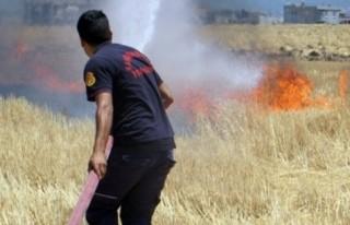 Yangınların Yüzde 36'sı İzmaritten Çıktı!