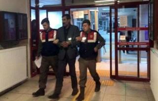 Üst düzey PKK'lı yakalandı!