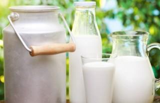 Light süt kalbi koruyor!