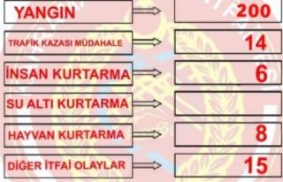 Bayram Tatilinin Bilançosu: 243 Olay