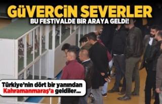 Kahramanmaraş'ta güvercin severler bu festivalde...